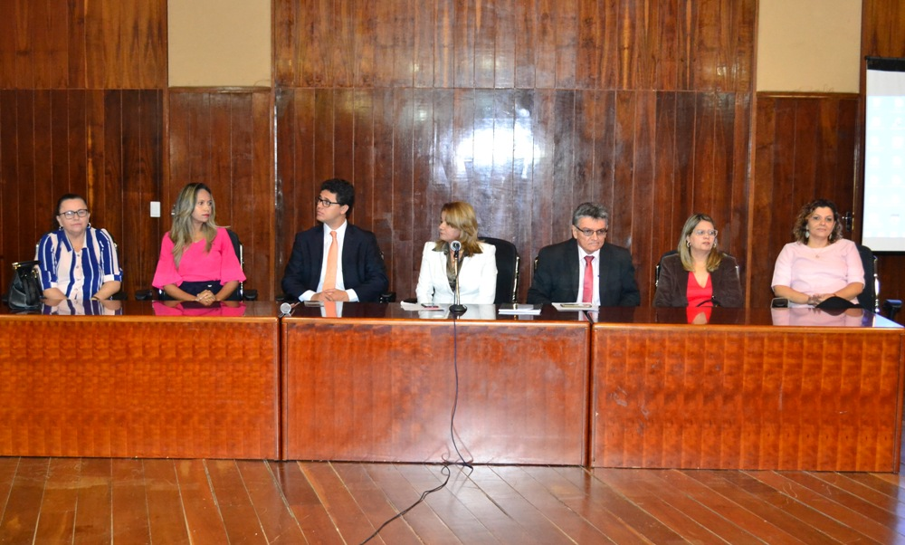 Dra. Karla Cibele Andrade na mesa de abertura do Mutirão
